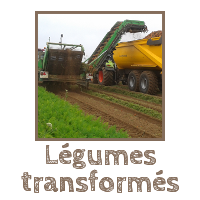Section Légumes transformés